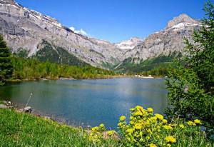 Swiss-Alps-Switzerland-300x206